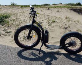 Kickbike FunStep